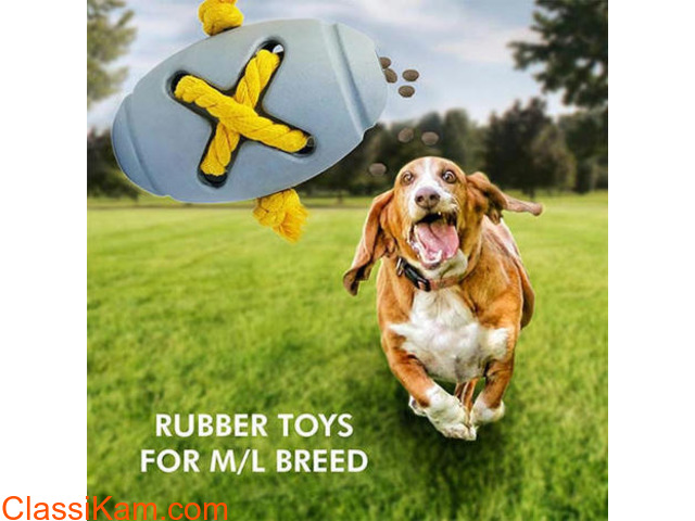 Buy Fetch Toys for Dogs Online in India - 1